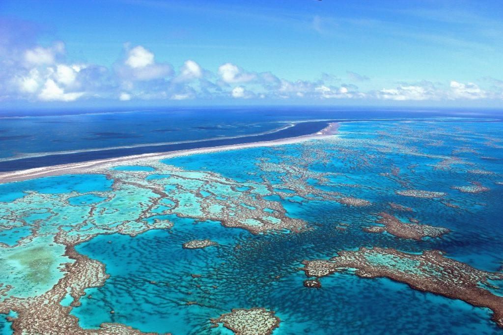 Grande Barriera Corallina del Queensland, Australia